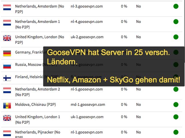 GooseVPN Server