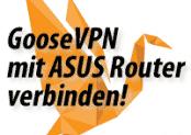 Anleitung: GooseVPN mit ASUS WLAN Router verwenden. Tips und Hilfe