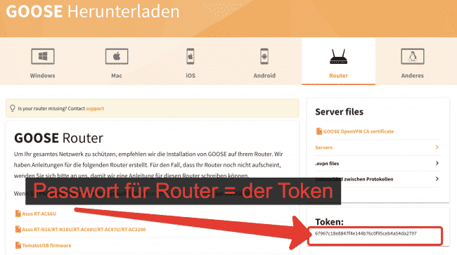 GooseVPN Zugangs-Token