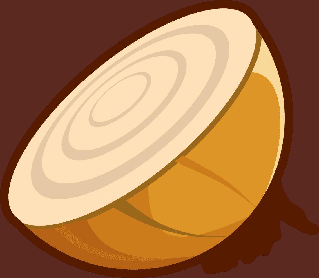 Zwiebel illu pixabay