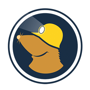 VILFO - Der schnellste VPN-Client Router für das Heimnetzwerk 43