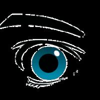 """Spionageallianz """"Five Eyes"""" mit neuem Gesetz gegen Verschlüsselung"""