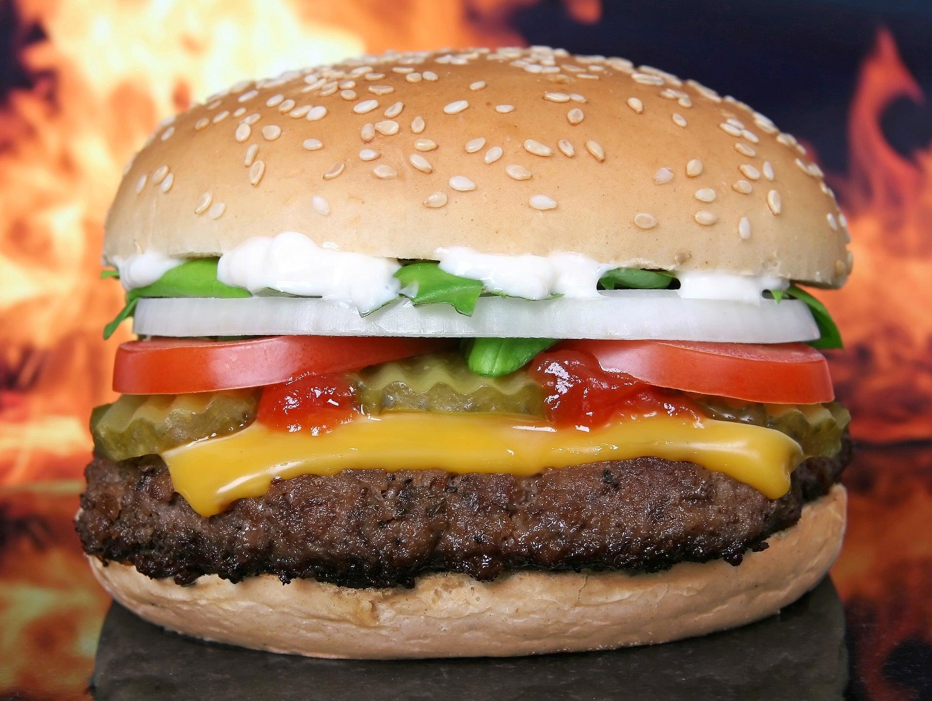 Hamburgervergleich