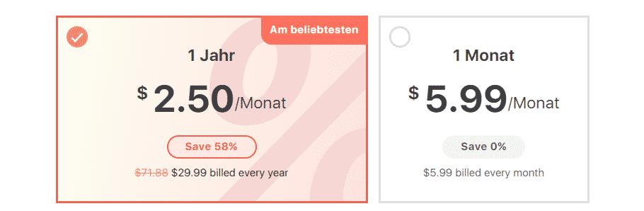 VPN99 Preise