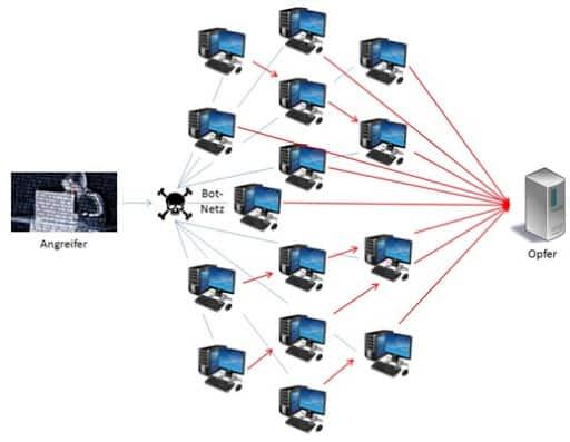 DDoS Netzwerk Schema