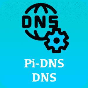 PI-DNS