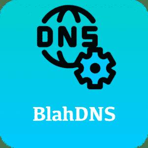BlahDNS