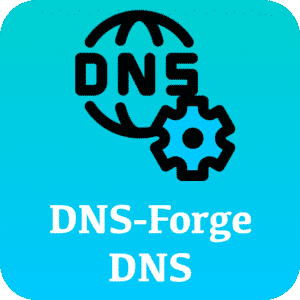 DNS Forge