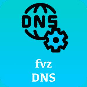 fvz DNS