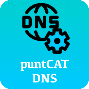 puntCAT DNS