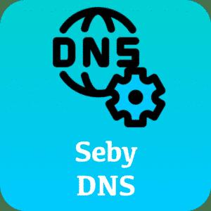 Seby DNS